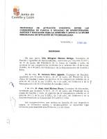 Junta de Castilla y León. Protocolo de actuación conjunta para la atención y apoyo a la mujer embarazada en situación de vulnerabilidad. 2013